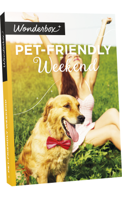 Zoom Pet-friendly Weekend